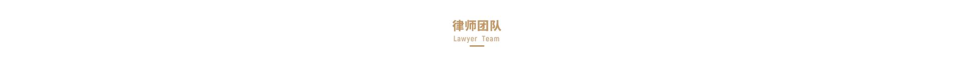 小微律政律师团队